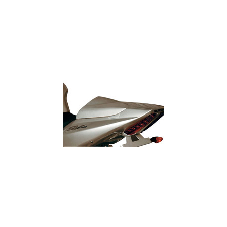 SV1000 passenger handle removal covers - 1